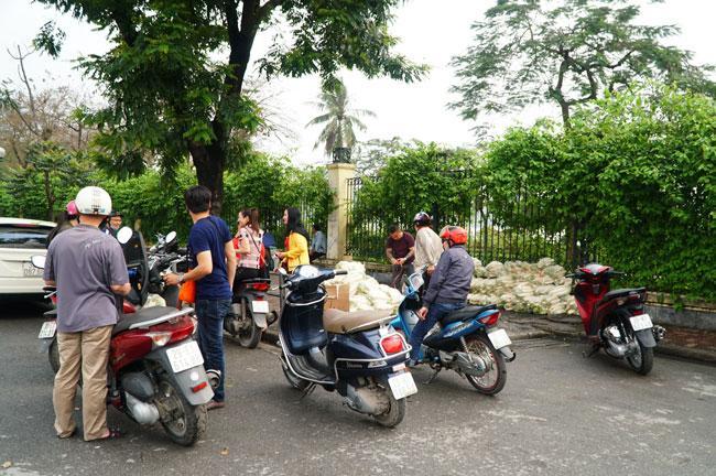 người dân giải cứu củ cải giúp người dân