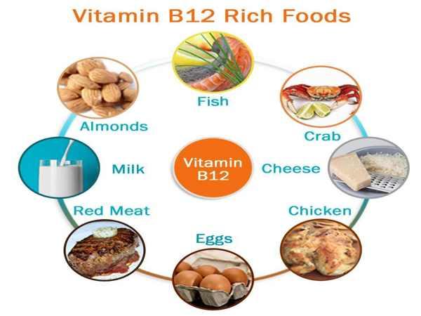 Vai trò và các thực phẩm giàu vitamin B12