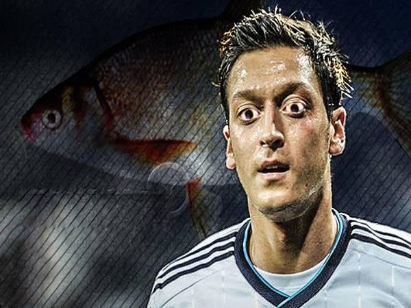 Điểm tin bóng đá 17/7: Perez chê Ozil là cá tráp