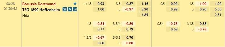 Tỷ lệ kèo bóng đá giữa Dortmund vs Hoffenheim
